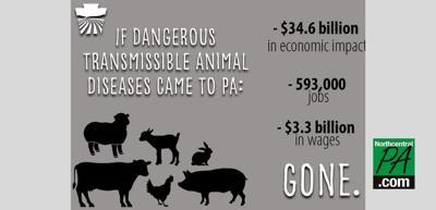 Animal disease graphic
