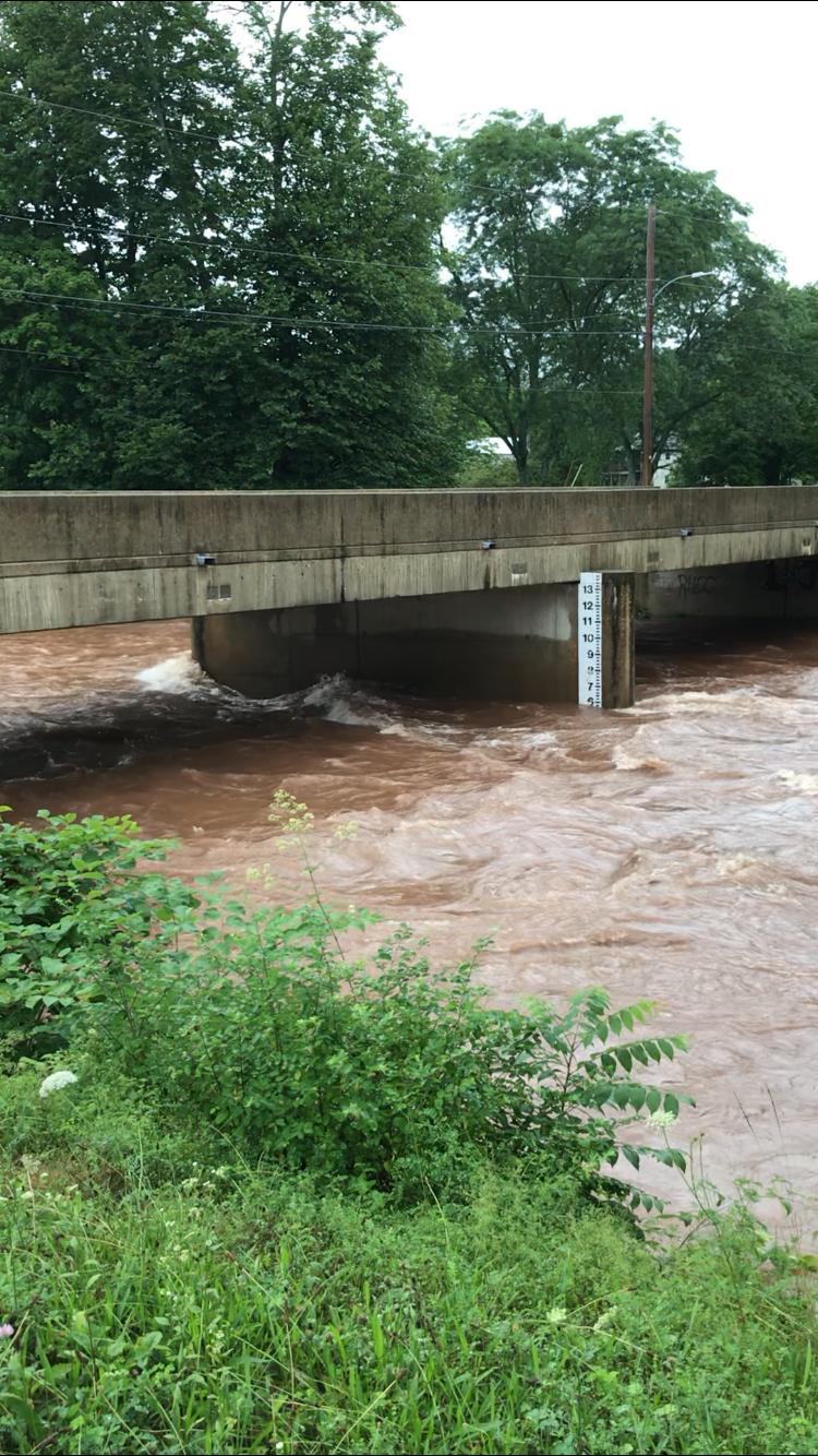 Video of Muncy Creek waters surging