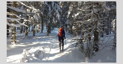 skiing stock pic.jpg