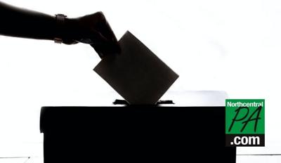 vote in a box.jpg