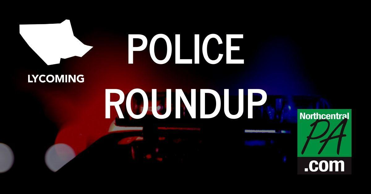 Lycoming police roundup graphic _ 2020