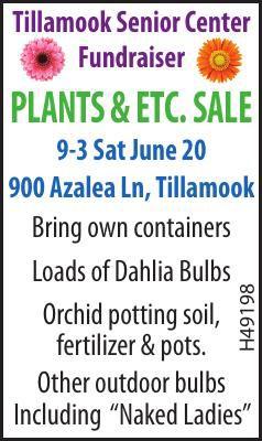 PLANT SALE JUNE 20 FUNDRAISER for Tillamook Senior Center 061720