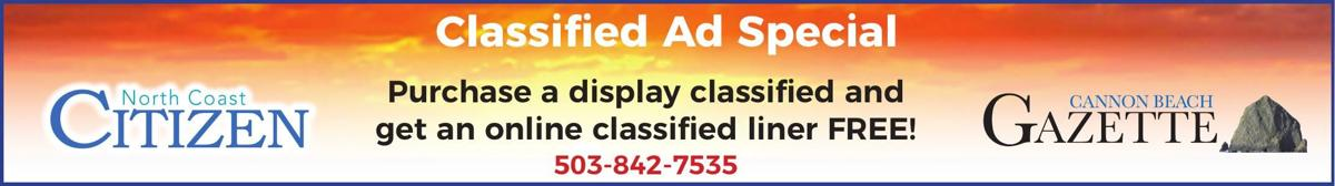 Classified Print and Online ad Special