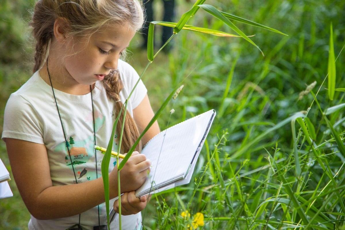 Junior Naturalists Summer Camp