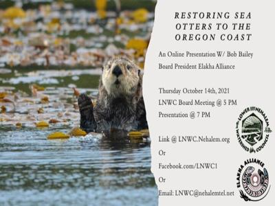 Restoring sea otters