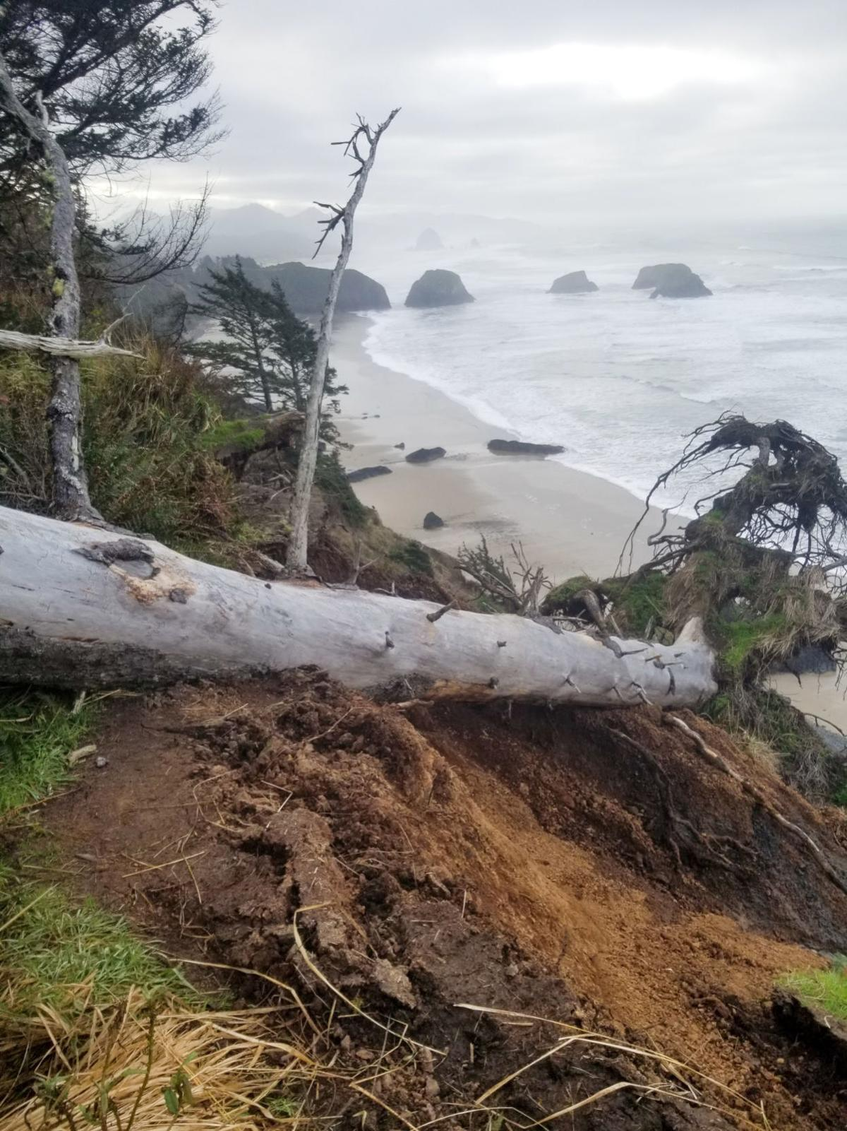 Ecola State Parks