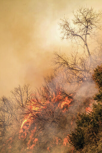 Wildfire Awareness Month