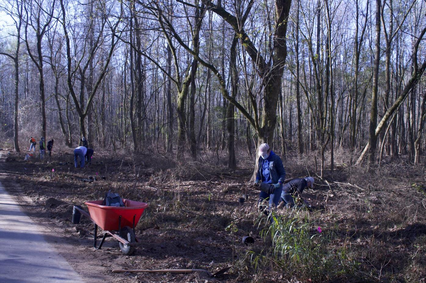 Volunteer help with Green Way clean up