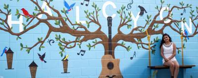 halcyon mural