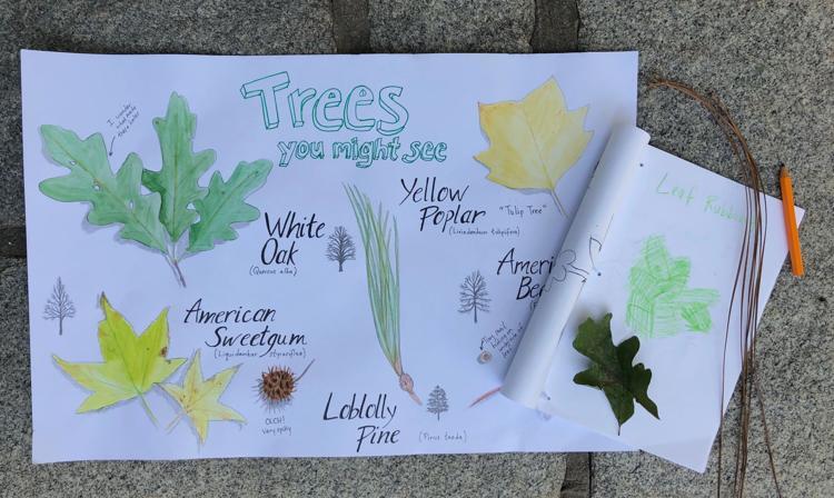 Naturally Artistic September 15- November 30