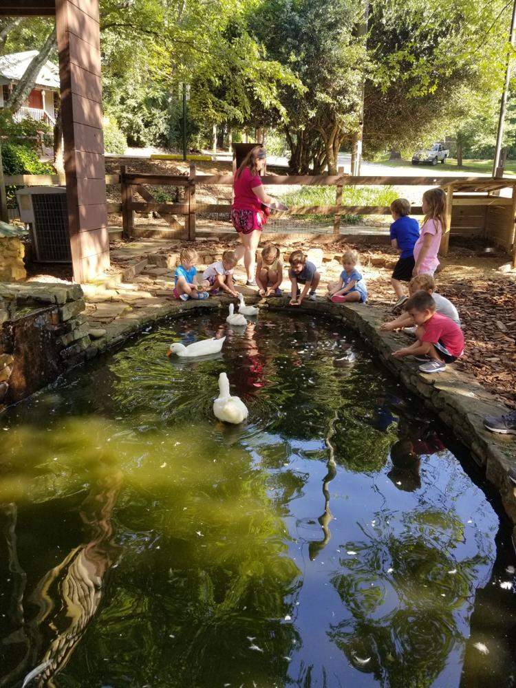 Connecting with Nature at Camp Autrey Mill!