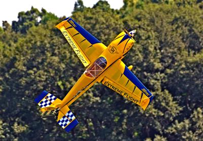 Model aviators group seeks lease extension