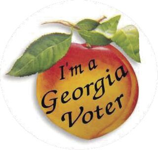 Ga Voter