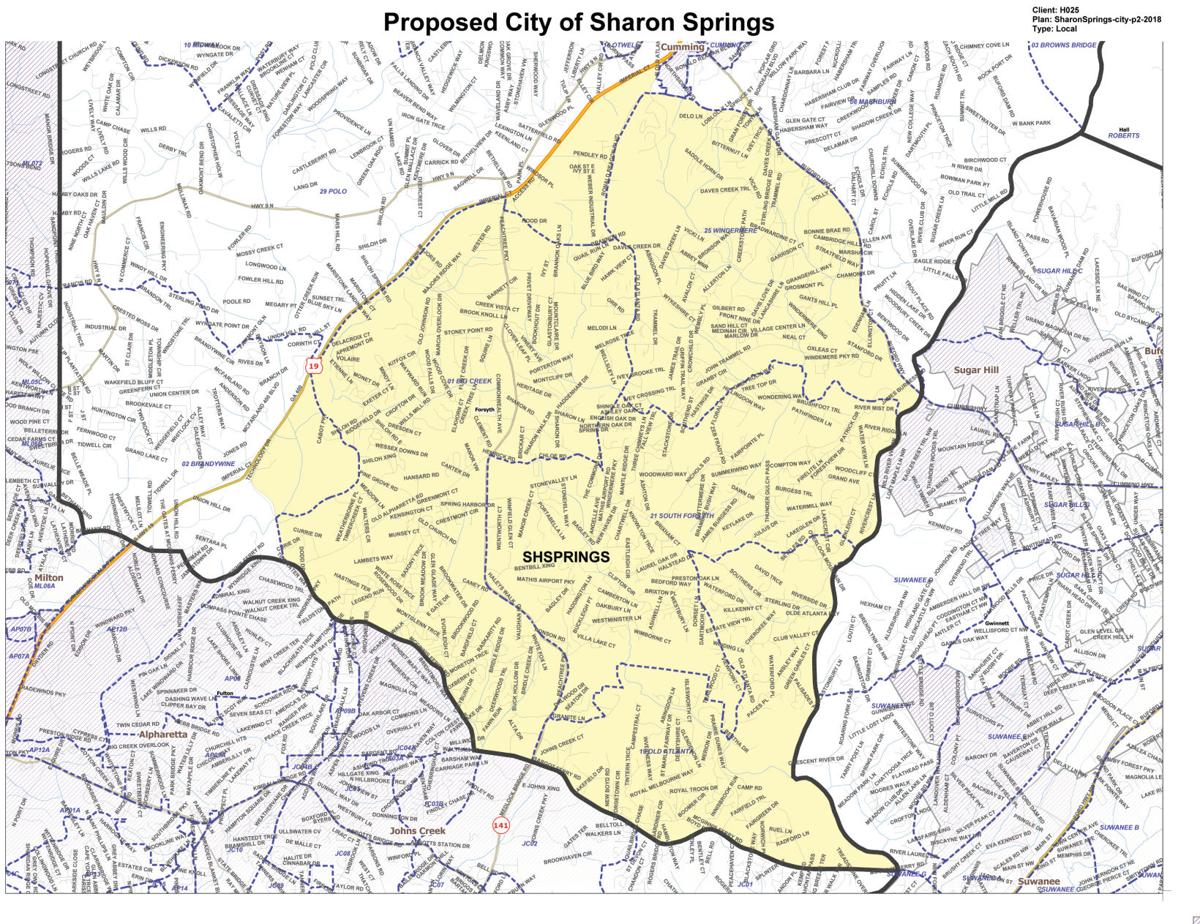 Forsyth County reviews Sharon Springs borderlines