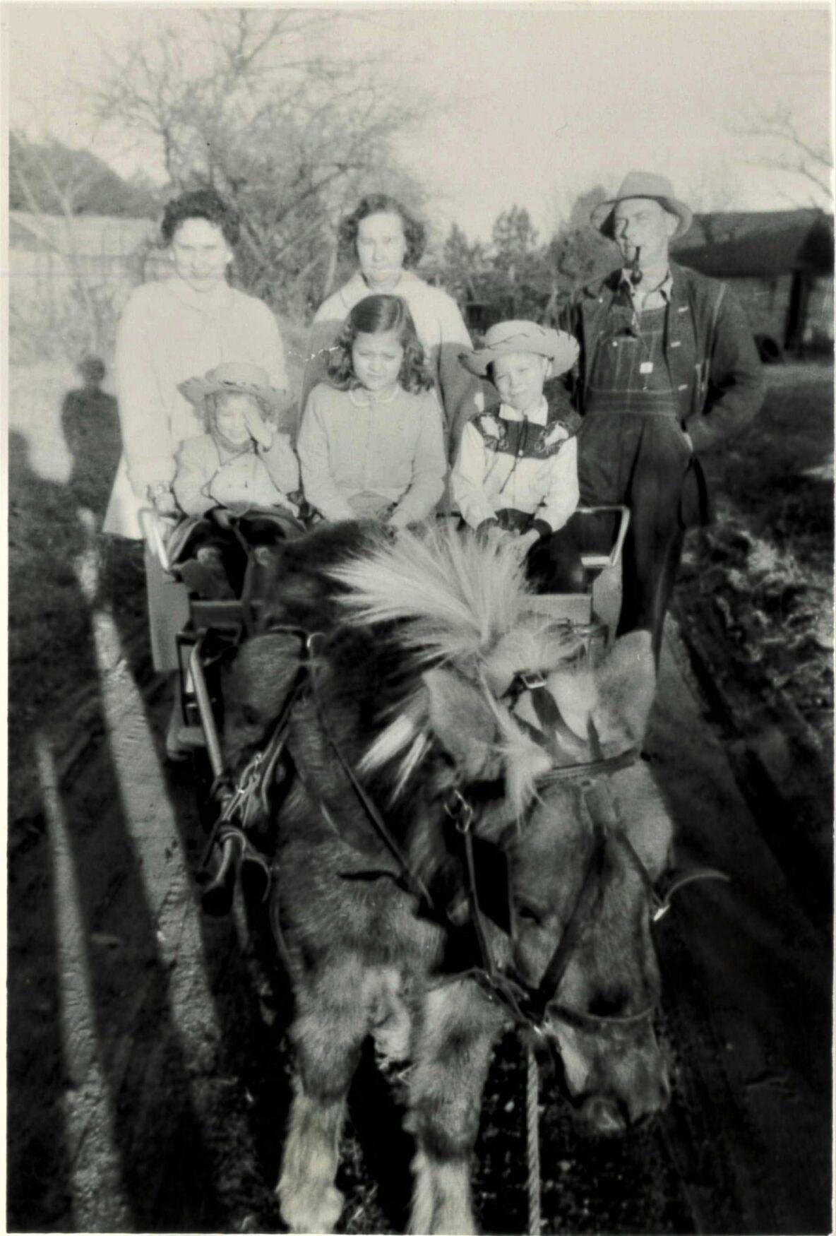 Remembrances of Warnock Farm
