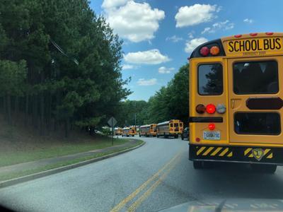 Prospect Buses