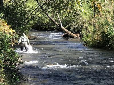 It's a great time for trout fishing