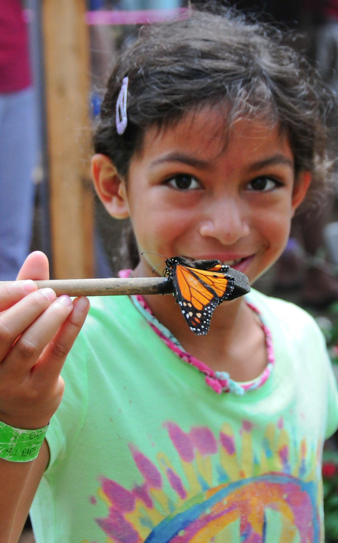 Butterfly Encounter at Chattahoochee Nature Center