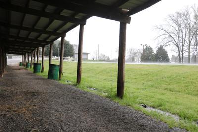 Wills Park Equestrian