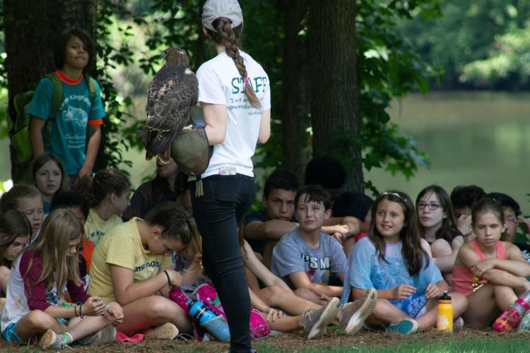 Animal demo at Camp Kingfisher