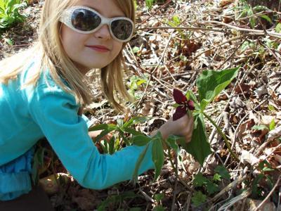 woods walk - Ella and trillium.jpg
