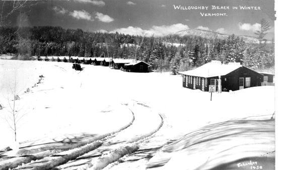 Winter Willoughby