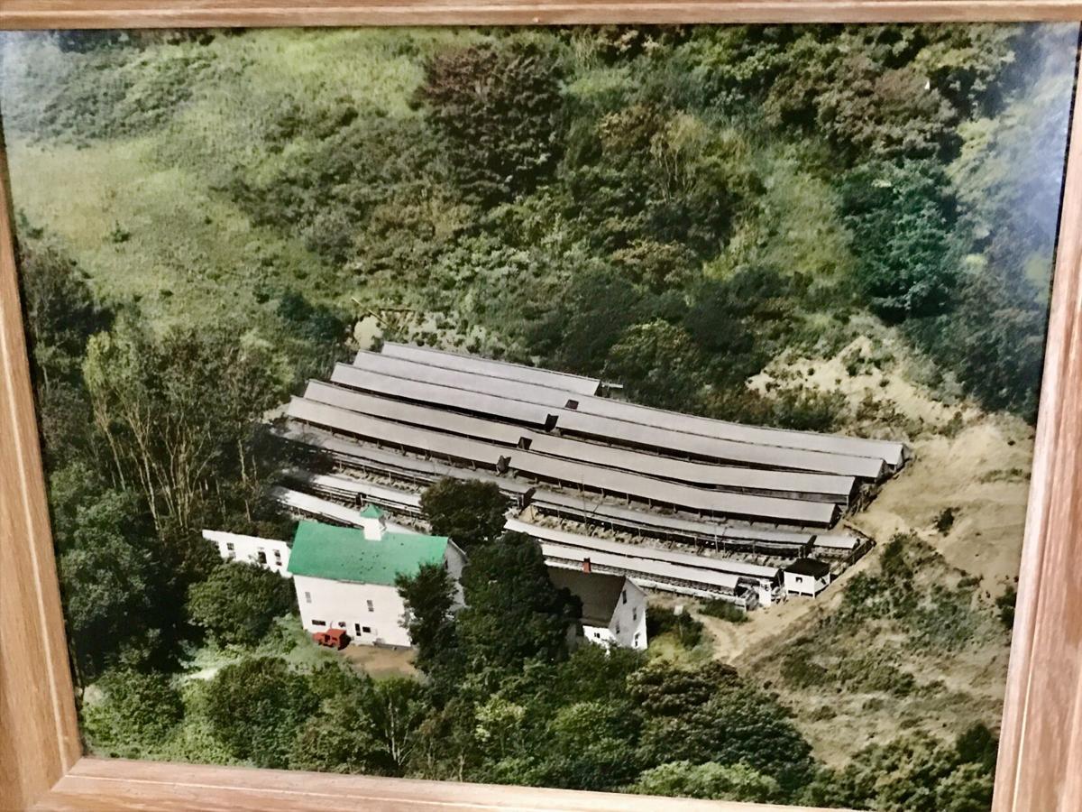Hillcrest Mink Ranch.jpg