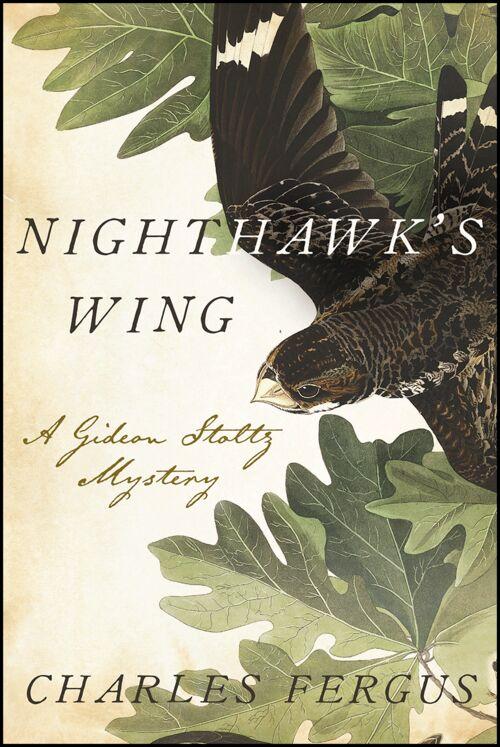 Nighthawk's+Wing.png