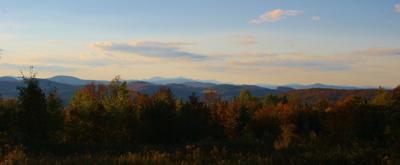 colleen cole landscape