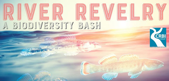 CRBI's River Revelry returns  Aug. 26 with live music, taco take down and celebrity lip sync contest