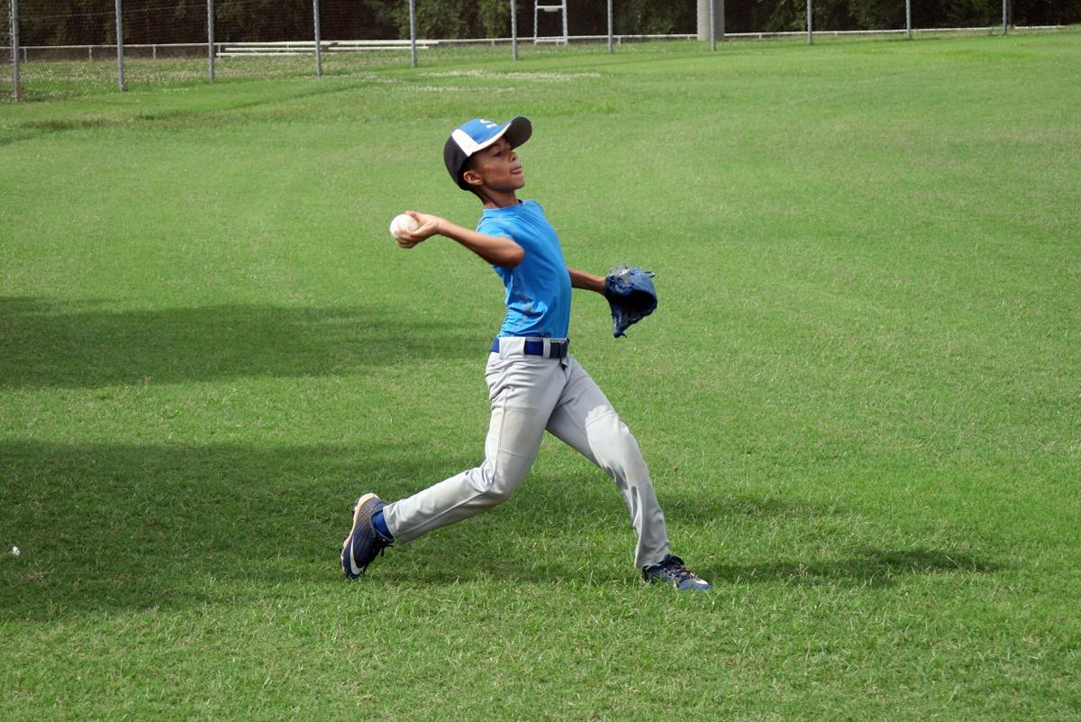 MLB baseball camp