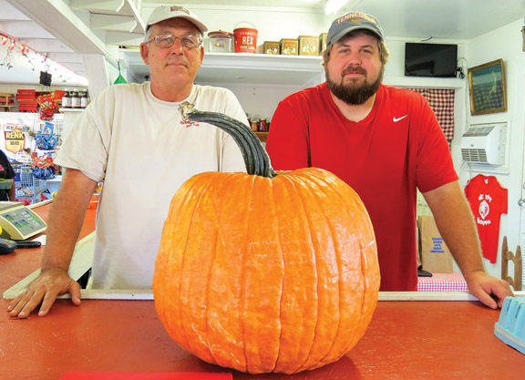 Amish in Fort Oglethorpe | Catoosa Walker News