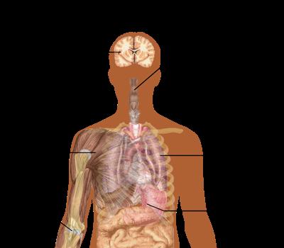 Flu symptoms generic