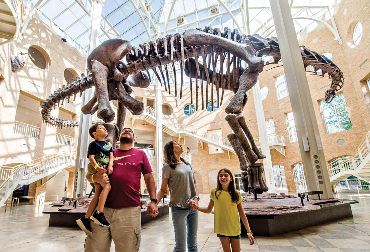 Fernbank Summer Science Series