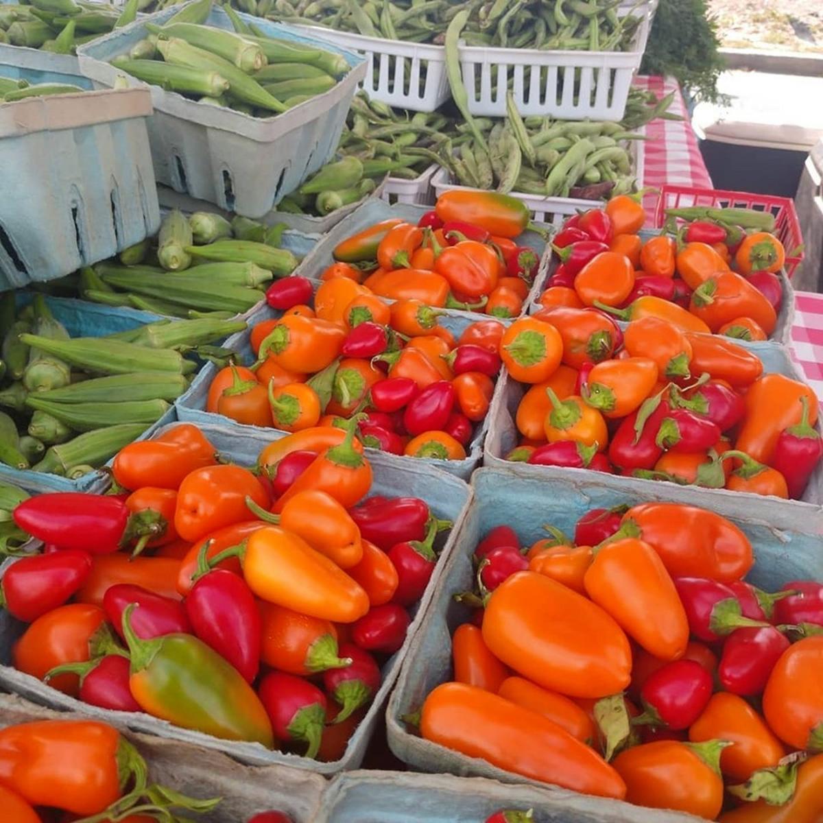 Rockmart Farmers Market October 2019