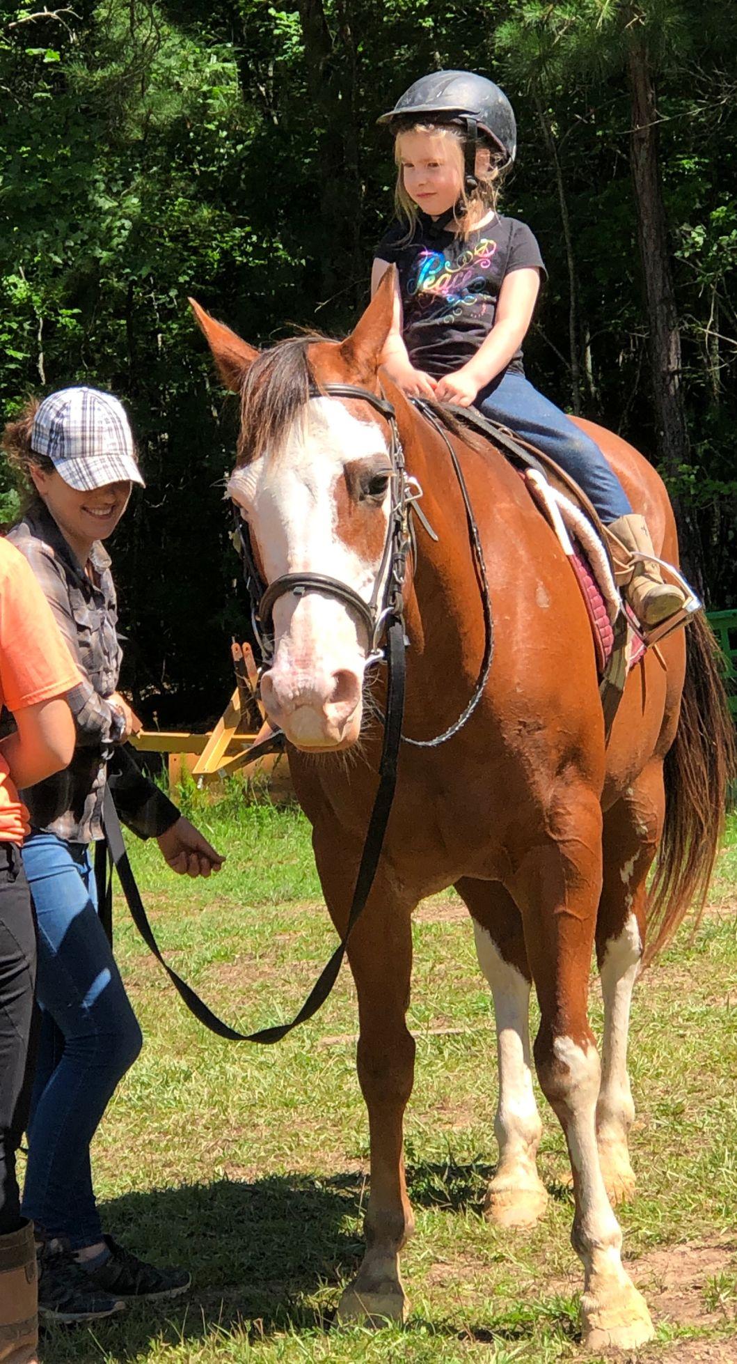 HorseCamp1