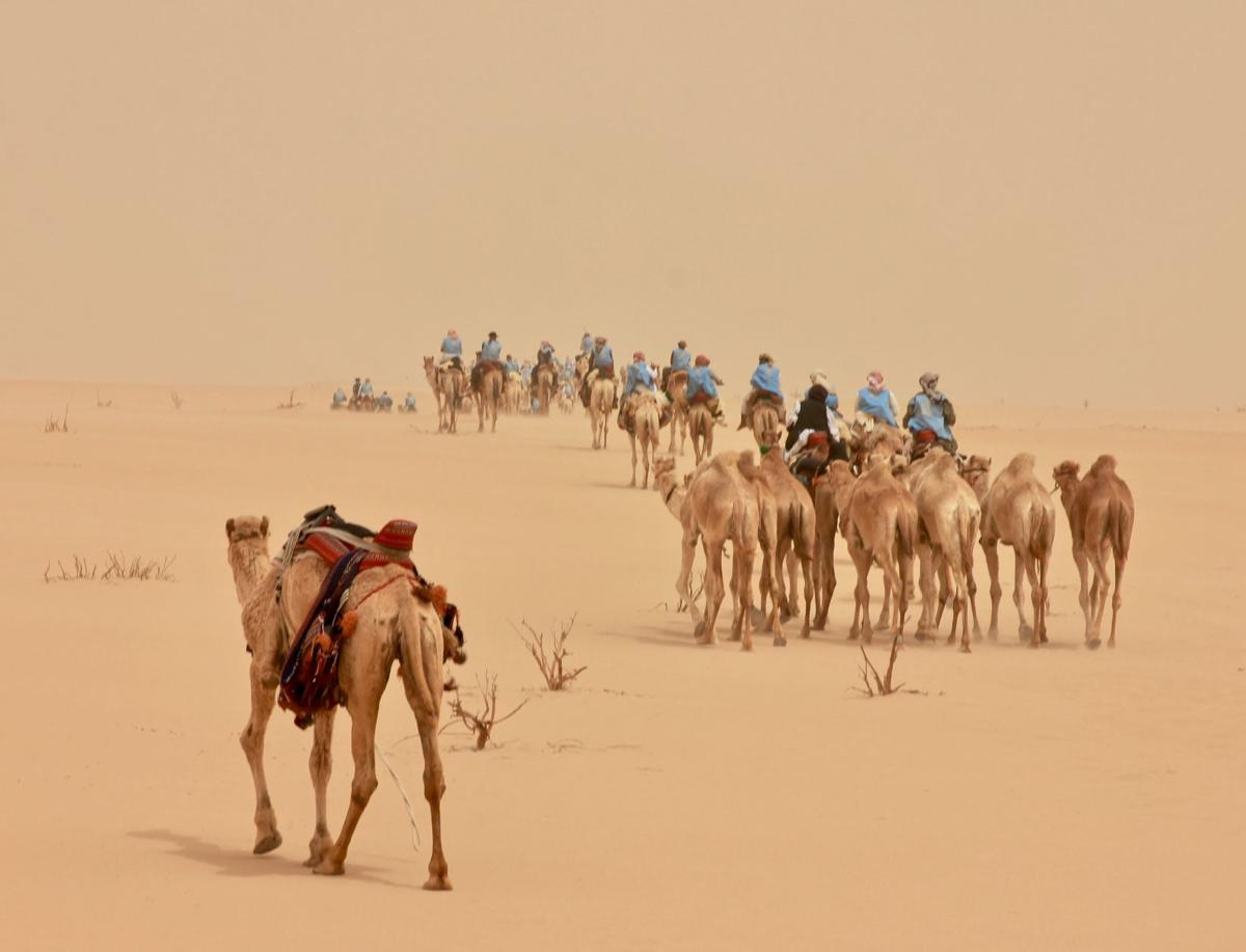 041319_TCT_CamelTrek3