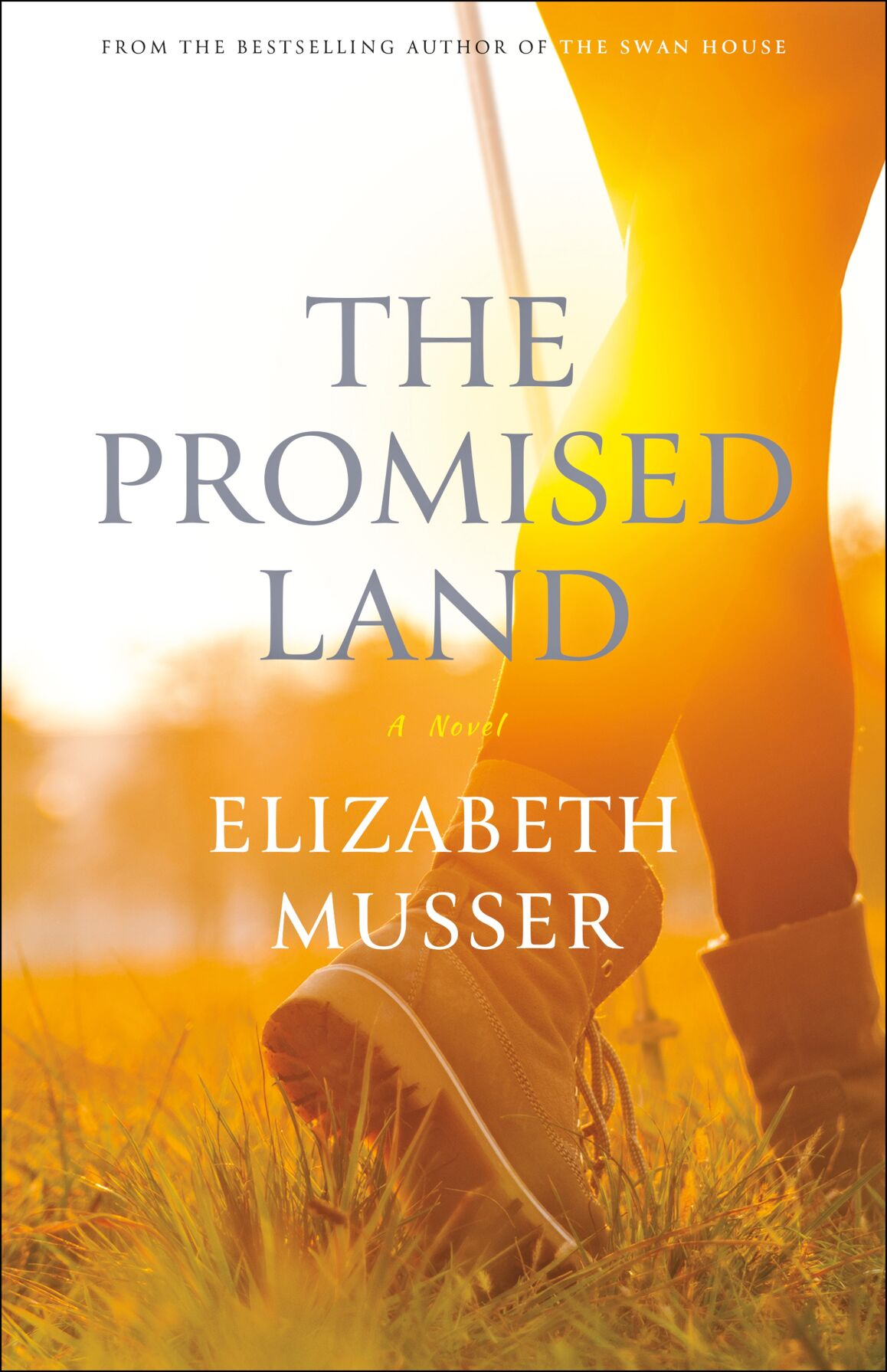 120220_MNS_Promised_Land The Promised Land cover