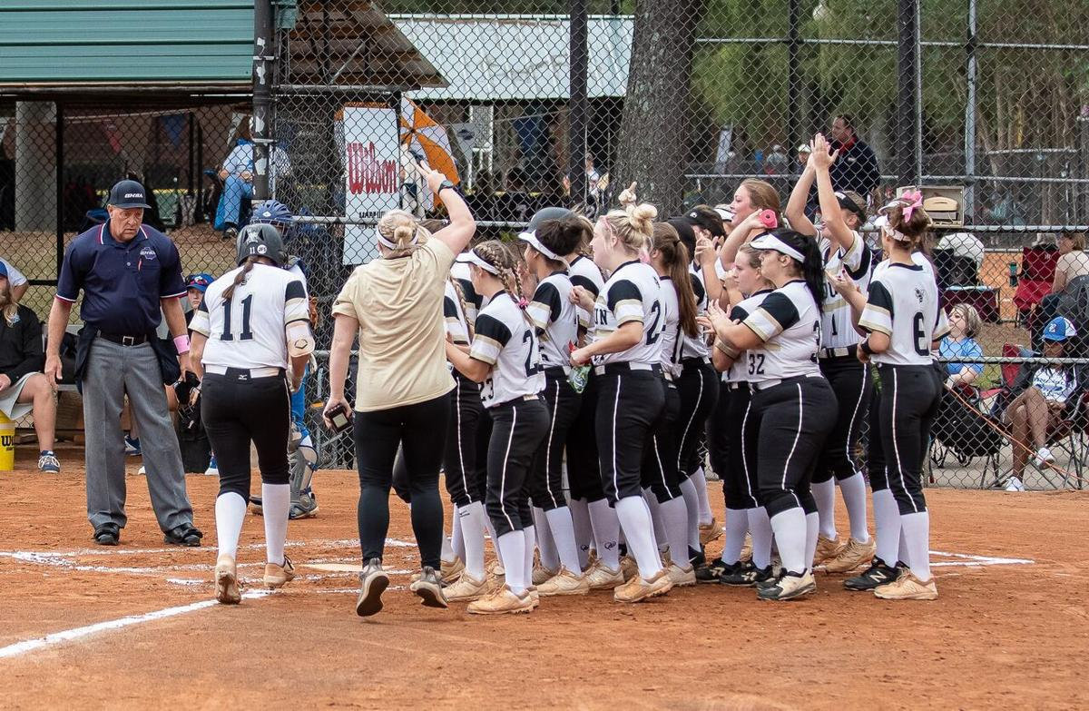 Calhoun Softball - 2019 State Tournament Lyndi Rae Davis HR