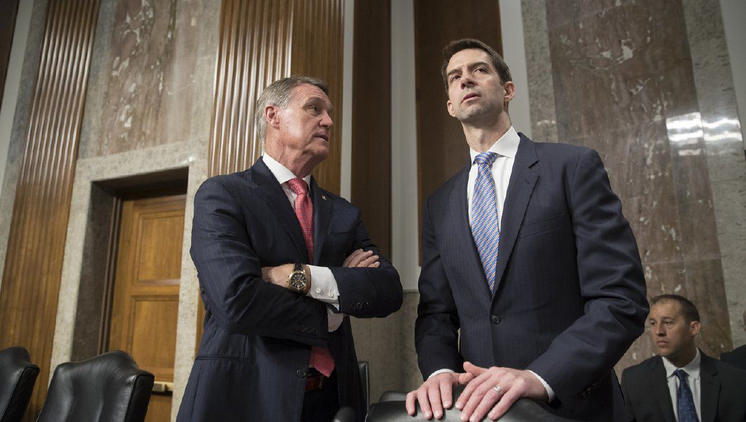 Senators Perdue, Cotton comment on yesterday's White House meeting on immigration