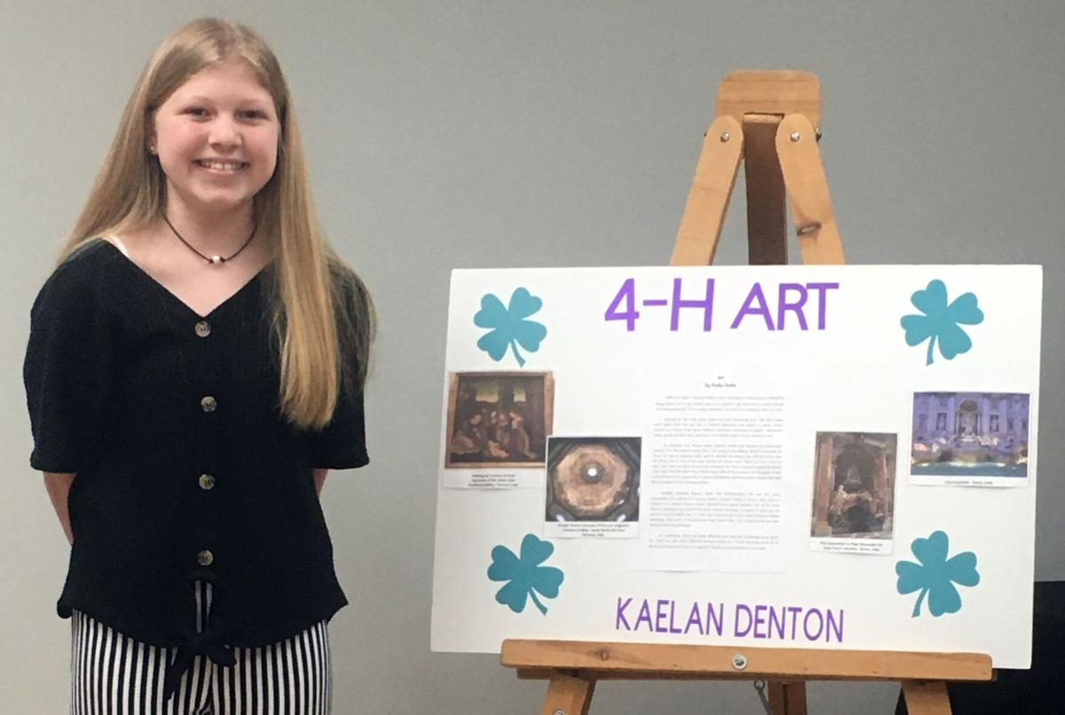 Polk 4-H'ers win county project achievement