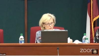 House Study Committee on Childhood Lead Exposure