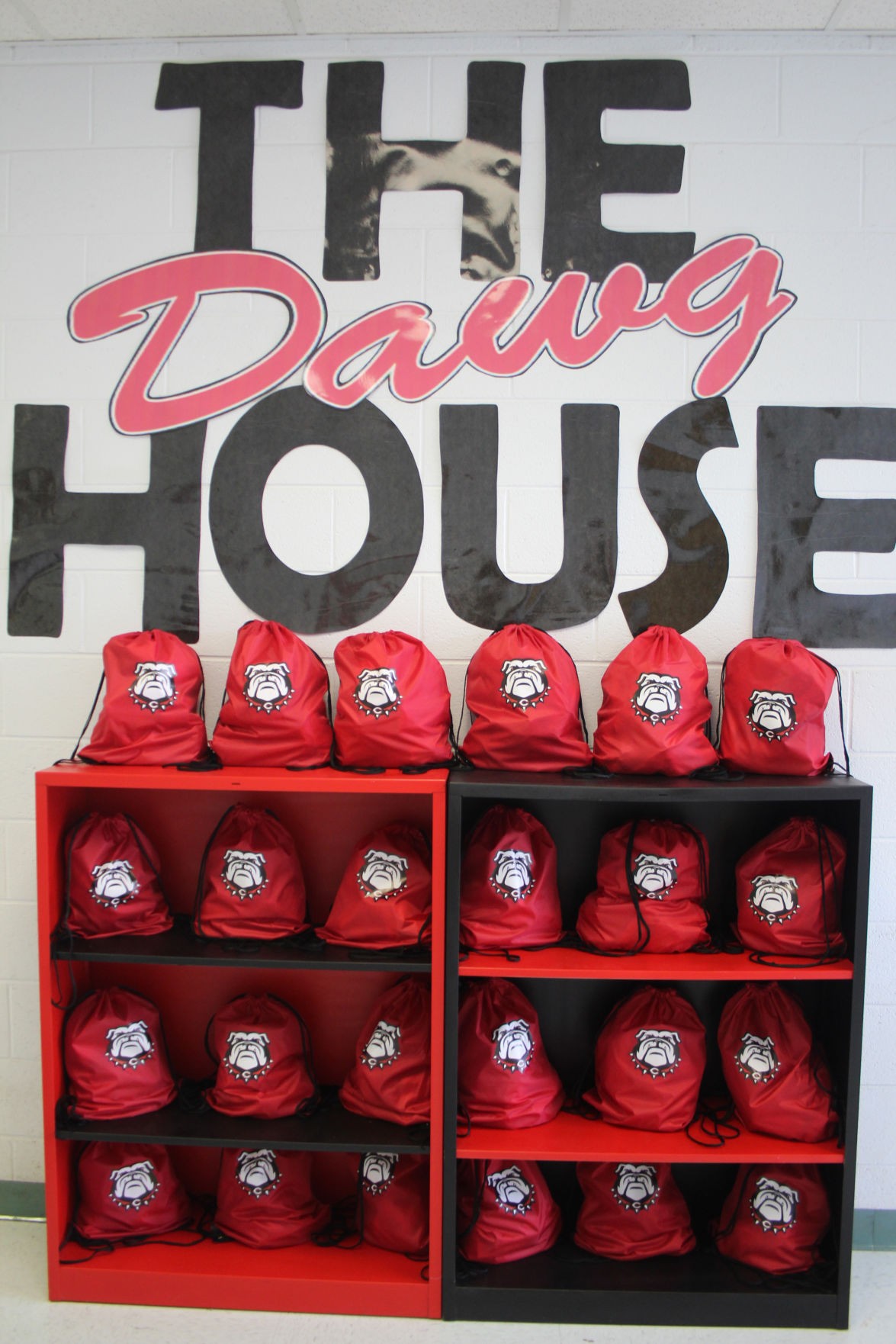 CMS The Dawg House program