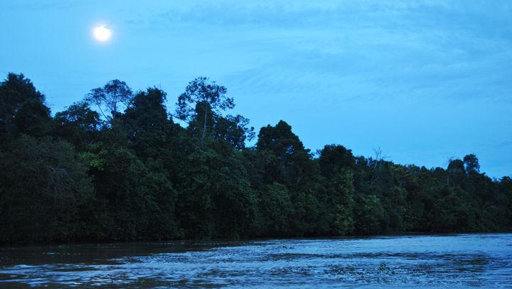 CRBI Harvest Moon Paddle set for Thursday night