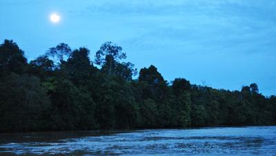CRBI Harvest Moon Paddle