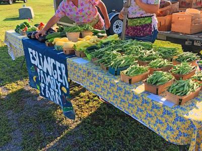 Catoosa Farmers Mkt vendor