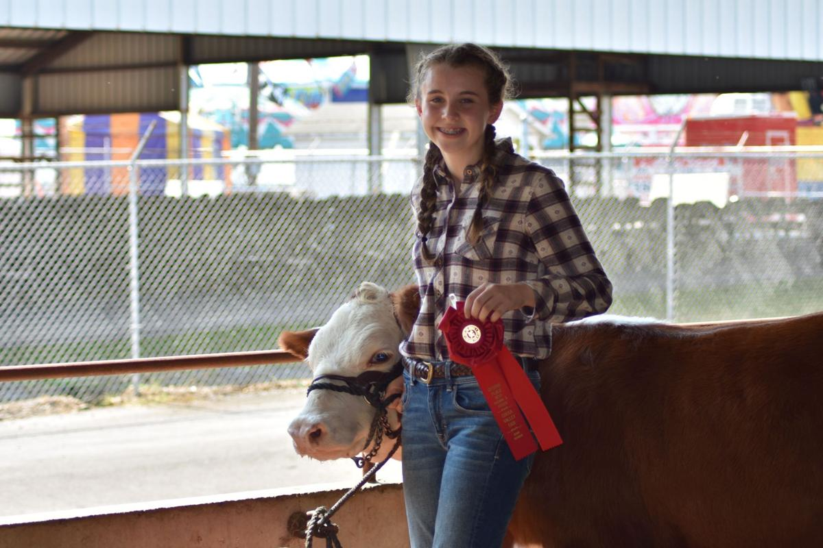 Coosa Valley Fair Livestock Show 2019