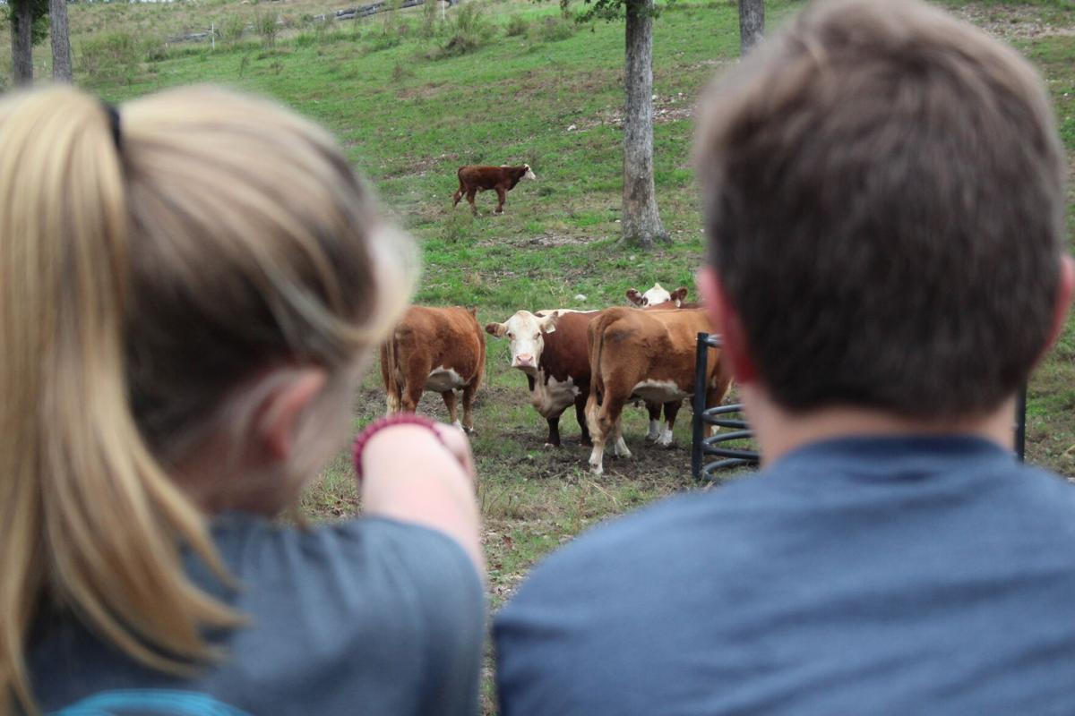 Students visit local farm to hear about different careers in agribusiness