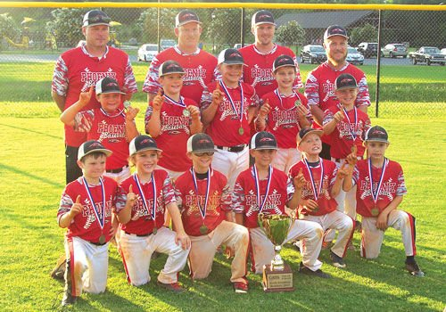 Sonoraville 8U All-Stars State