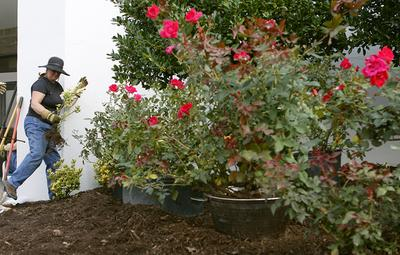 Floyd County Master Gardeners